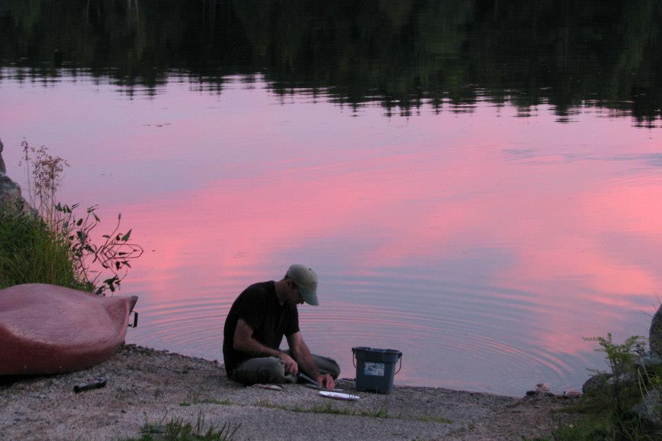 Cleaning fish by Nicatous Lake at sunset.